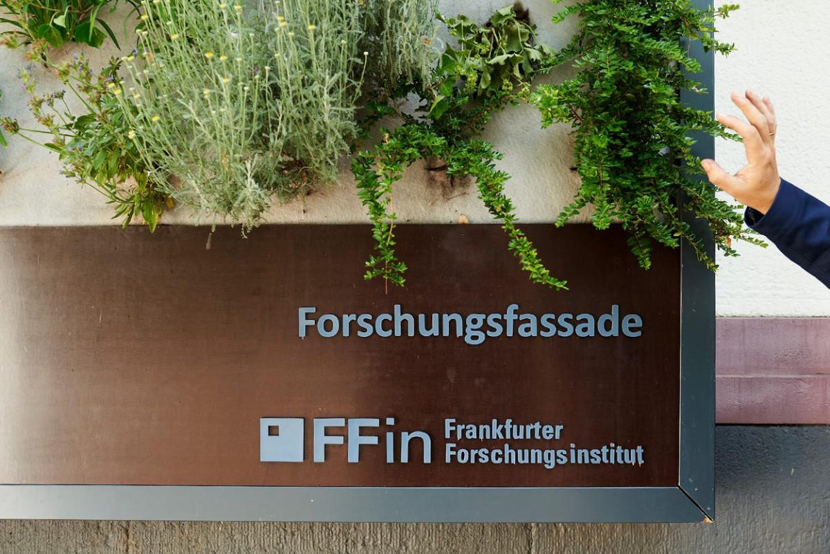 dachbegruenung_frankfurt_university_9.jpg-s1250