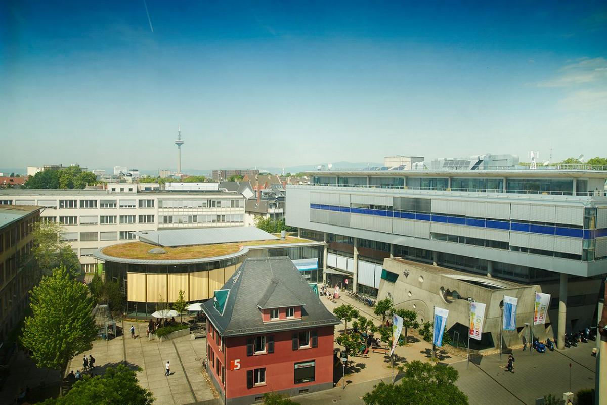 dachbegruenung_frankfurt_university_16.jpg-s1250