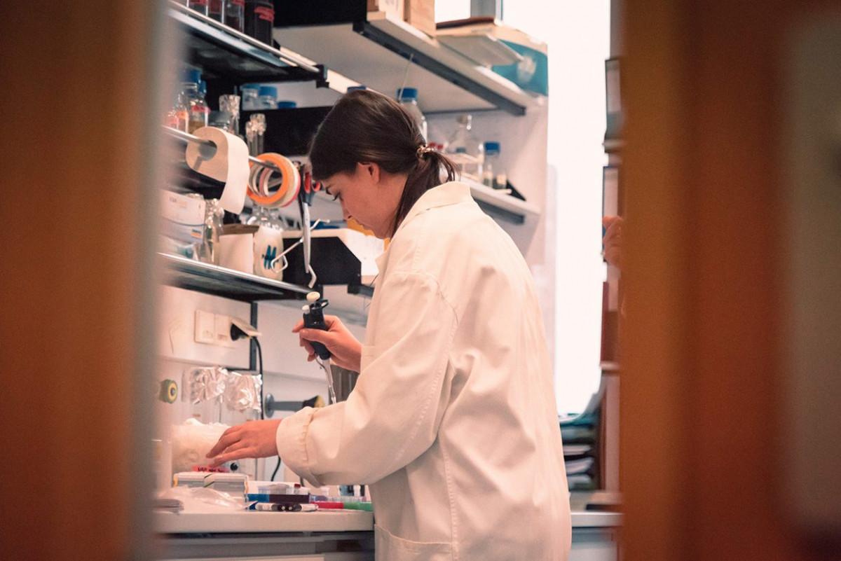 mikrobiologie_goethe_universitaet_5