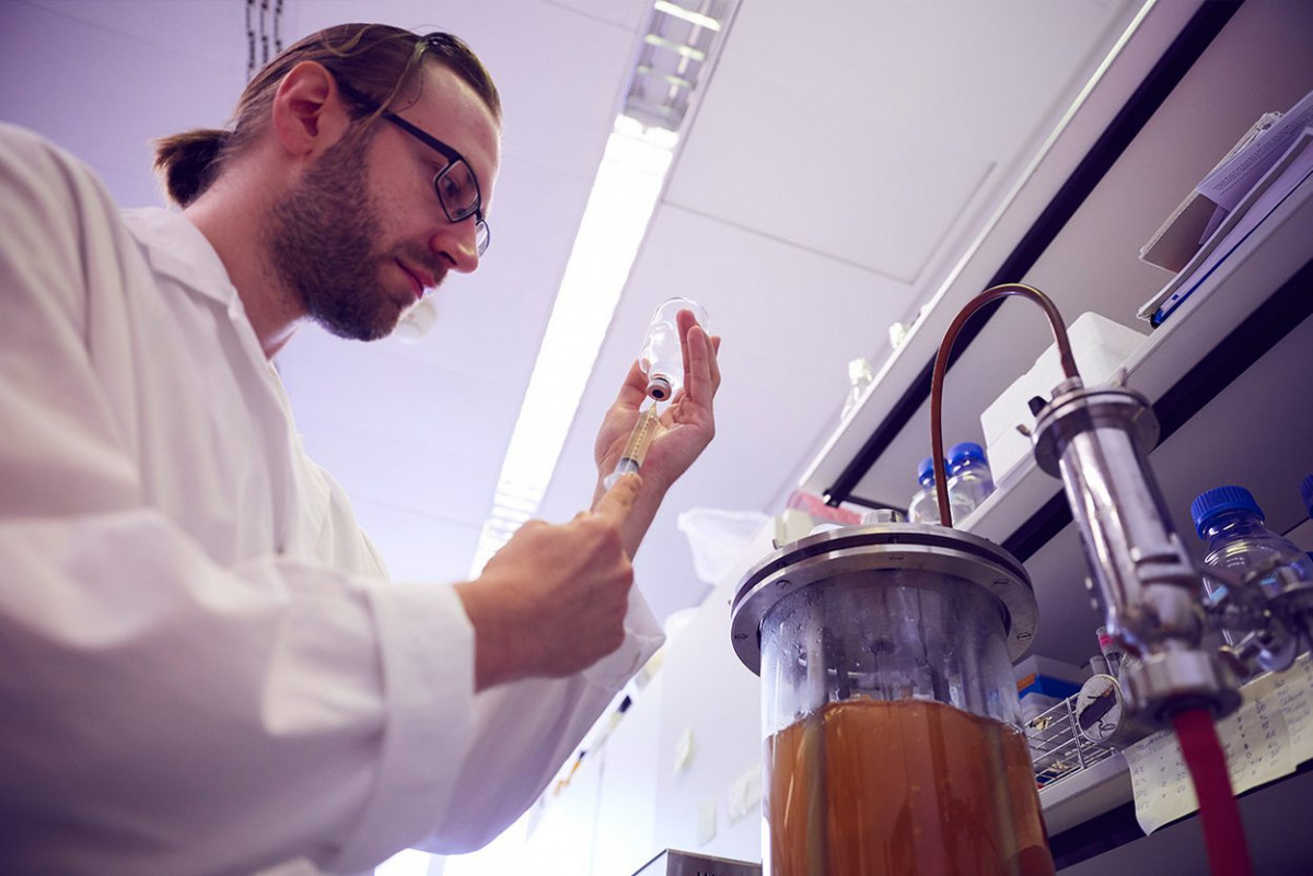 molekulare_mikrobiologie_frankfurt_3.jpg-s1250
