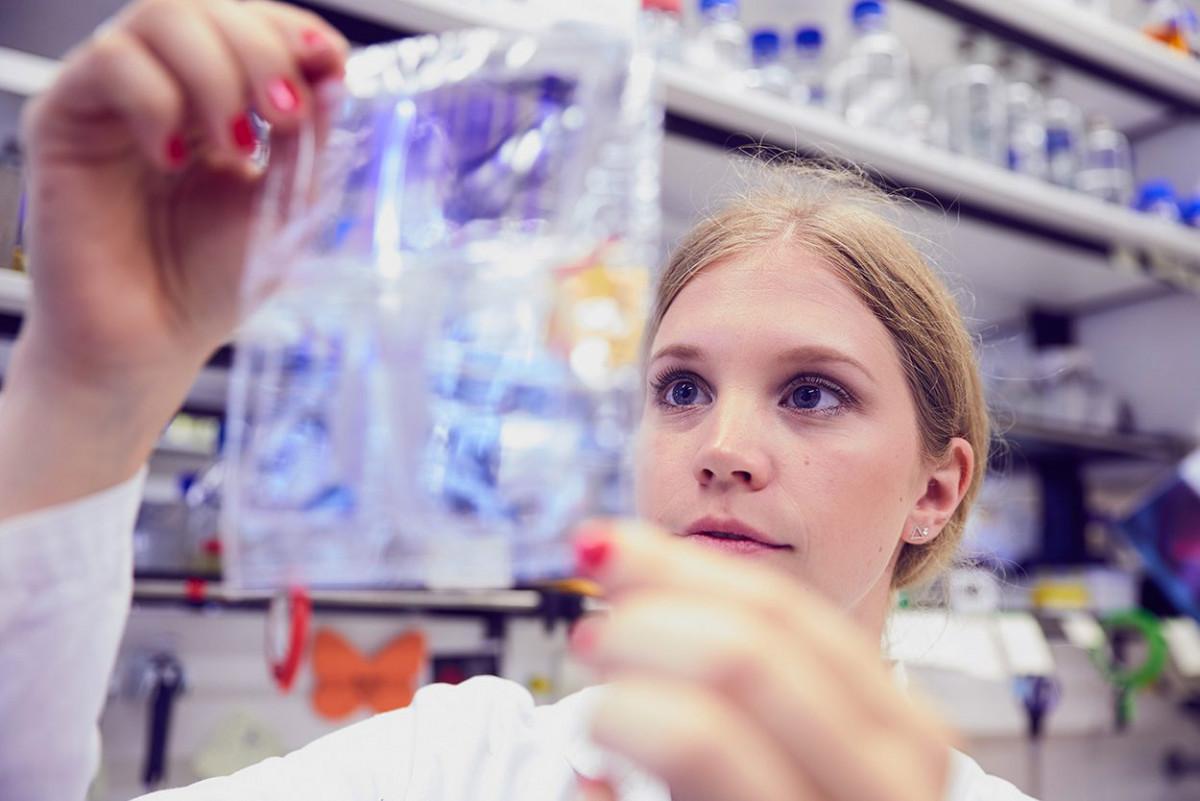 molekulare_mikrobiologie_frankfurt_13