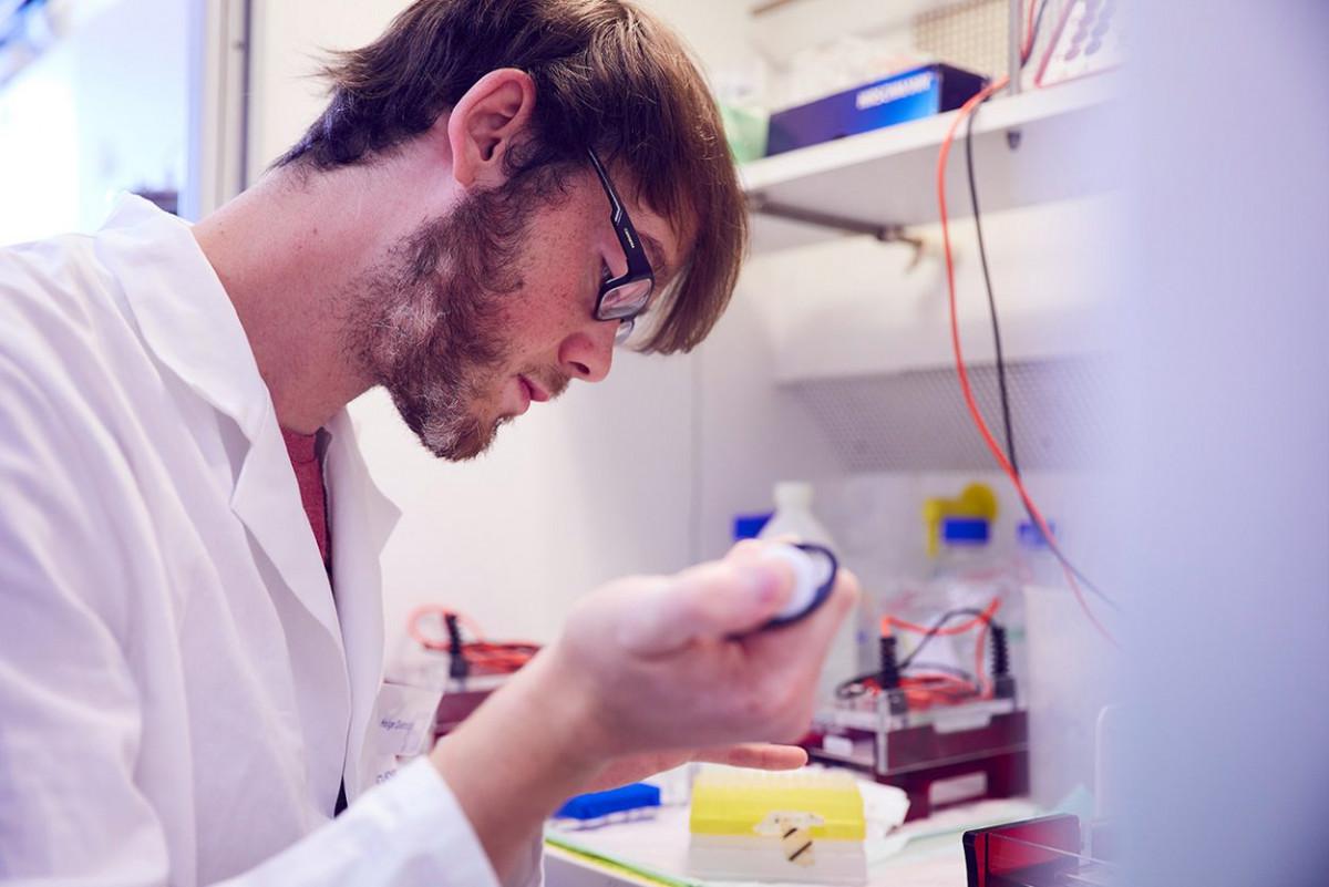 molekulare_mikrobiologie_frankfurt_17